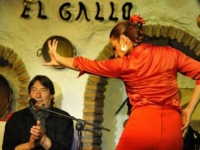 flamenco in grot in Granada